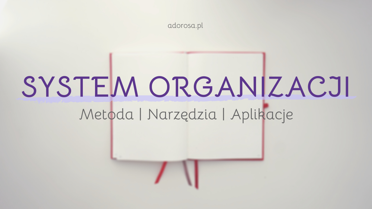 system organizacji